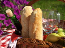 Romantisk picknick Royaltyfria Foton