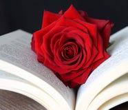 Romantisk röd ros på en bok, förälskelsesymbol Arkivbild