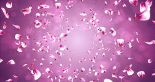 Romantisk röd rosa Rose Sakura Flower Petals Falling Background för flyg ögla 4k royaltyfri illustrationer