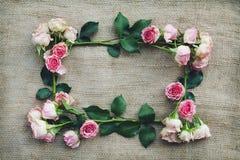 Romantisk ram av rosor Arkivbilder