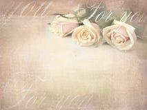 Romantisk retro grungebakgrund med rosor Söta rosor i tappningfärg utformar med fritt utrymme för text Fotografering för Bildbyråer