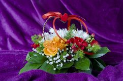 Romantisk sammansättning av rosor på en bakgrund royaltyfria foton