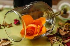 Romantisk sammansättning med den vinexponeringsglas, rosor och flaskan av vin arkivbild