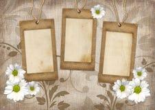 Romantisk scrapbookbakgrund Arkivbilder