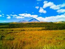 Romantisk sikt av det lugna berget i horisonten och det gula fältet arkivbilder
