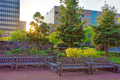Romantisk solnedgång i parkera i Philadelphia PA Royaltyfria Bilder