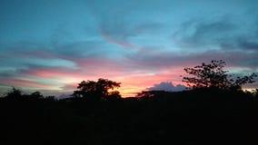 Romantisk solnedgång på skog Royaltyfria Bilder
