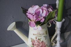Romantisk stilleben med kopieringsutrymme för text Royaltyfria Bilder