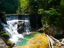 Romantisk vattenfall med klart blått vatten i den Vintgar klyftan, Radovna flod i Julian Alps, Slovenien, Europa arkivfoton