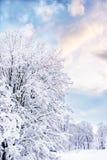 romantisk vinter royaltyfri bild
