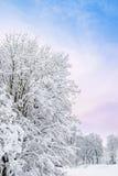 romantisk vinter Royaltyfri Fotografi