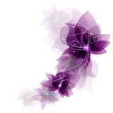Romantiska blommor Fotografering för Bildbyråer