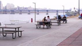 Romantiska koreanska par på Han River som tillsammans äter på, parkerar, Seoul, Sydkorea arkivfilmer