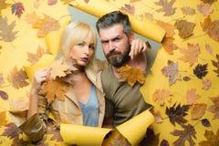 Romantiska par på bakgrund för höstsidor Härliga mjuka par annonserar din produkt och tjänst Mode royaltyfri fotografi