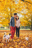 Romantiska par som utomhus går i höst, parkerar med hundkapplöpning Arkivfoto
