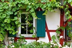 Romantiskt fönster Royaltyfri Fotografi