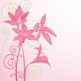 Romantiskt hälsningkort med blommor och krullning. Vektorillustrati Arkivbilder