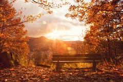 Romantyczna ławka Fotografia Royalty Free