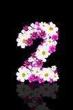 Romantyczna liczba piękni kwiaty 2 Obraz Royalty Free