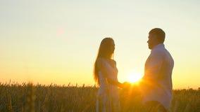 Romantyczna młoda szczęśliwa pary sylwetka w złotym pszenicznym polu przy zmierzchem Kobieta, mężczyzny całowanie przeciw i przyt zbiory