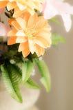 Romantyczna marzycielska i miękka ostrość kwiat Obrazy Royalty Free