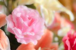 Romantyczna marzycielska i miękka ostrość róża kwiat Obraz Stock