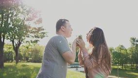 Romantyczna para dmucha wiązkę dandelions w lecie w łące w słońcu szczęśliwi razem Obejmują each zbiory