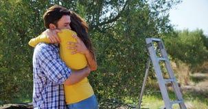 Romantyczna para obejmuje each inny w oliwki gospodarstwie rolnym 4k zbiory wideo