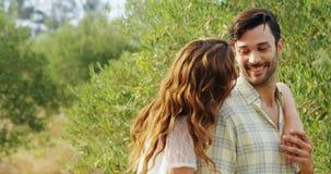 Romantyczna para obejmuje each inny w oliwki gospodarstwie rolnym 4k zbiory