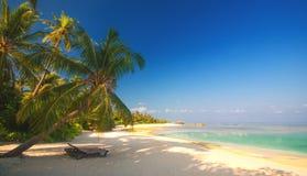 Romantyczna plażowa sceneria zdjęcie royalty free