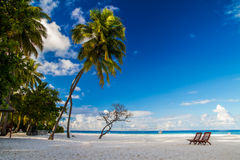 Romantyczna plażowa sceneria z sunbeds na Maldives Obrazy Stock
