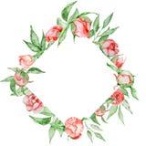 Romantyczna rama z kwiatu Karcianym szablonem Akwareli peonie z zielenią opuszczają na białym tle szczotkarski węgiel drzewny rys Zdjęcie Royalty Free