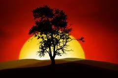 romantyczny drzewo ilustracja wektor