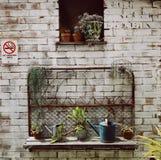 Romantyczny idylliczny roślina stół w ogródzie z starym retro kwiatu garnkiem puszkuje, wytłacza wzory, i rośliny Ziemia, ogrodni obraz stock