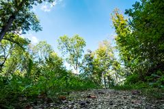Romantyczny krajobrazowy Koenigsbronn obraz stock