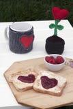 Romantyczny śniadanie w ogródzie Zdjęcie Royalty Free