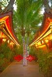 Romantyczny park, domy z wyginającymi się dachami i drzewka palmowe, dekorowaliśmy z girlandą zwrotniki Asja Fotografia Royalty Free
