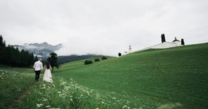 Romantyczny pary odprowadzenie wokoło dużego zieleni pola, mienie ręki zbiory wideo