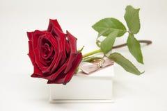 Romantyczny prezent Z miłością Fotografia Stock