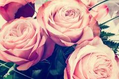 Romantyczny różowy róża rocznika tło Obrazy Royalty Free