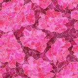 Romantyczny róża wzór Fotografia Stock