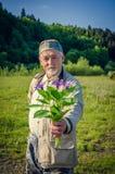 Romantyczny starszy mężczyzna Obraz Royalty Free