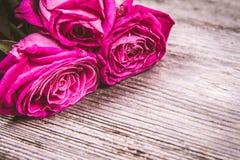 romantyczny tło Zdjęcia Stock
