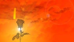 Romantyczny temat i złoty zmierzch z róży sylwetką