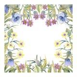 Romantyczny wianek Myśl szczęśliwa wizytówka wykonuje gradienty żadni szablony Wildflowers w akwareli ilustracji