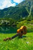 Romantyczny widok ukulele gitara przy halną natury zielenią Obraz Stock