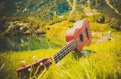 Romantyczny widok ukulele gitara przy halną natury zielenią Fotografia Stock