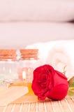 Romantyczny zdroju wjazd z czerwieni róży zakończeniem up zdjęcie royalty free