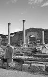 Romanum Forum Stock Photos