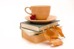 Romanzo di Autunm con la tazza di tè/cofee Fotografia Stock
